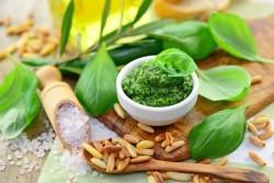 Basilikum Informationen und Kalorien / Nährwerte
