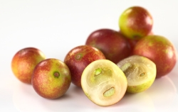 Superfood Camu-Camu