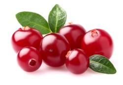 Cranberry Informationen und Kalorien / Nährwerte