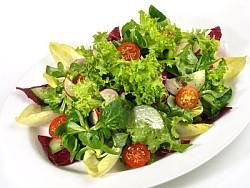 Endivie / Endiviensalat Informationen und Kalorien / Nährwerte