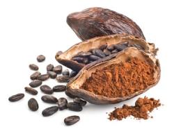 Superfood Kakaobohne Informationen und Kalorien / Nährwerte