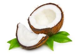 Kokosnuss Informationen und Kalorien / Nährwerte