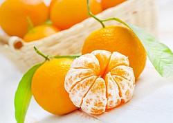 Mandarine Informationen und Kalorien / Nährwerte
