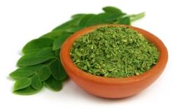 Superfood Moringa Informationen und Kalorien / Nährwerte