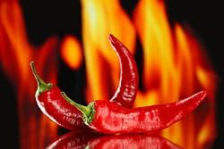 Bild für Paprika, rot