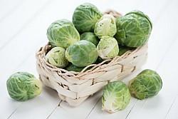 Rosenkohl Informationen und Kalorien / Nährwerte