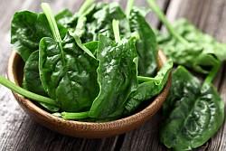Spinat Informationen und Kalorien / Nährwerte