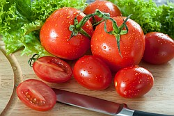 Tomate Informationen und Kalorien / Nährwerte